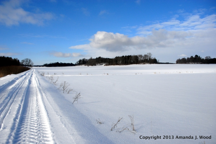 The fields are covered in snow for now