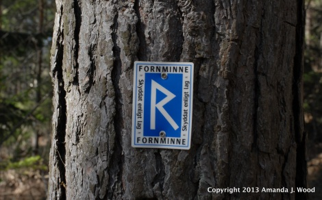 "On the way back to the car I saw this notice nailed to the tree. It says ""Antiquity. Protected by law"""