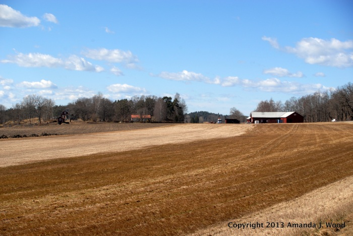 The fields of Nibbla Gård area.
