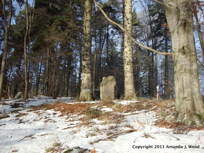 March 2011 Rune stone U18 still standing between two trees