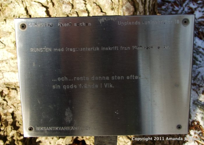 "The sign for U18. It is just a fragment of the text still visible. ""reste denna sten efter sin gode frände i Vik"" translates to ""raised this stone after his good mate in Vik"""