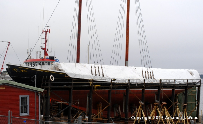 Bluenose II, restored? Ready to rock and roll on the seas?