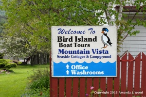 Bird Island Boat Tours