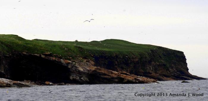 Hertford Island