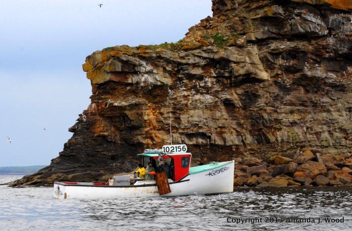 Lobster fishermen in action off the coast of bird islands, Cape Breton