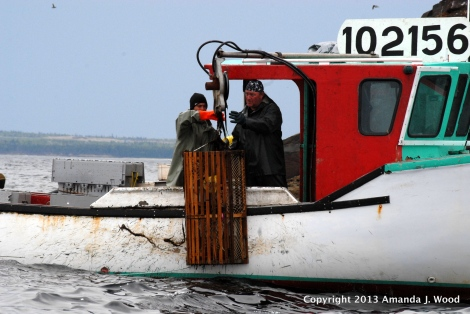 Lobster fishermen