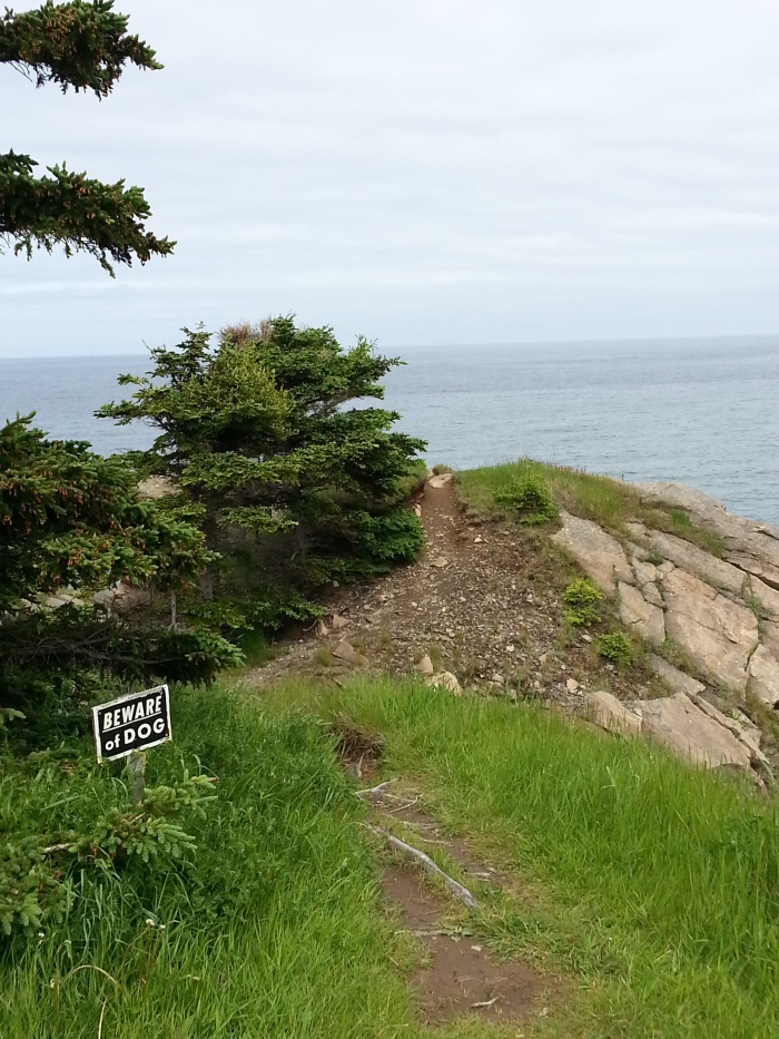 They have a sense of humour. This is at the edge of the cliff. Read the sign.