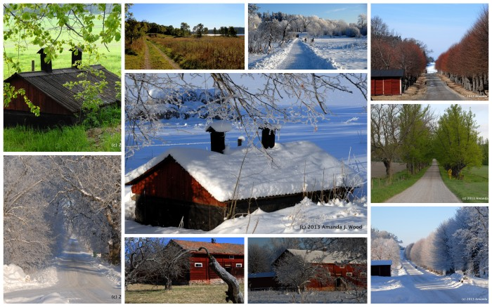 The seasons of Stafsund.