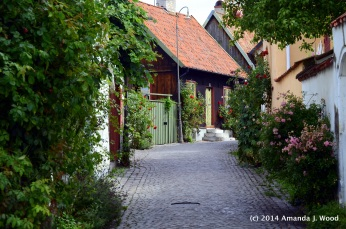 Lovely alleys with houses