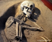 Gotland Museum. This is a 9000 year old grave, of an approx 40 year old man. The grave is in a glass case.