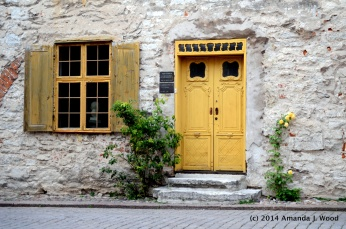 Beautiful doors and flowers